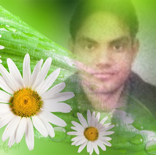 Profile picture of niraj kumar